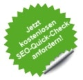 SEO Quick Analyse