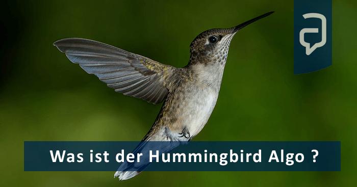 Definition_Hummingbird